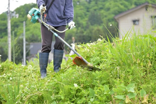 出雲市で草刈りに最適な年3回の時期~楽に草刈りを終えるコツまで徹底解説